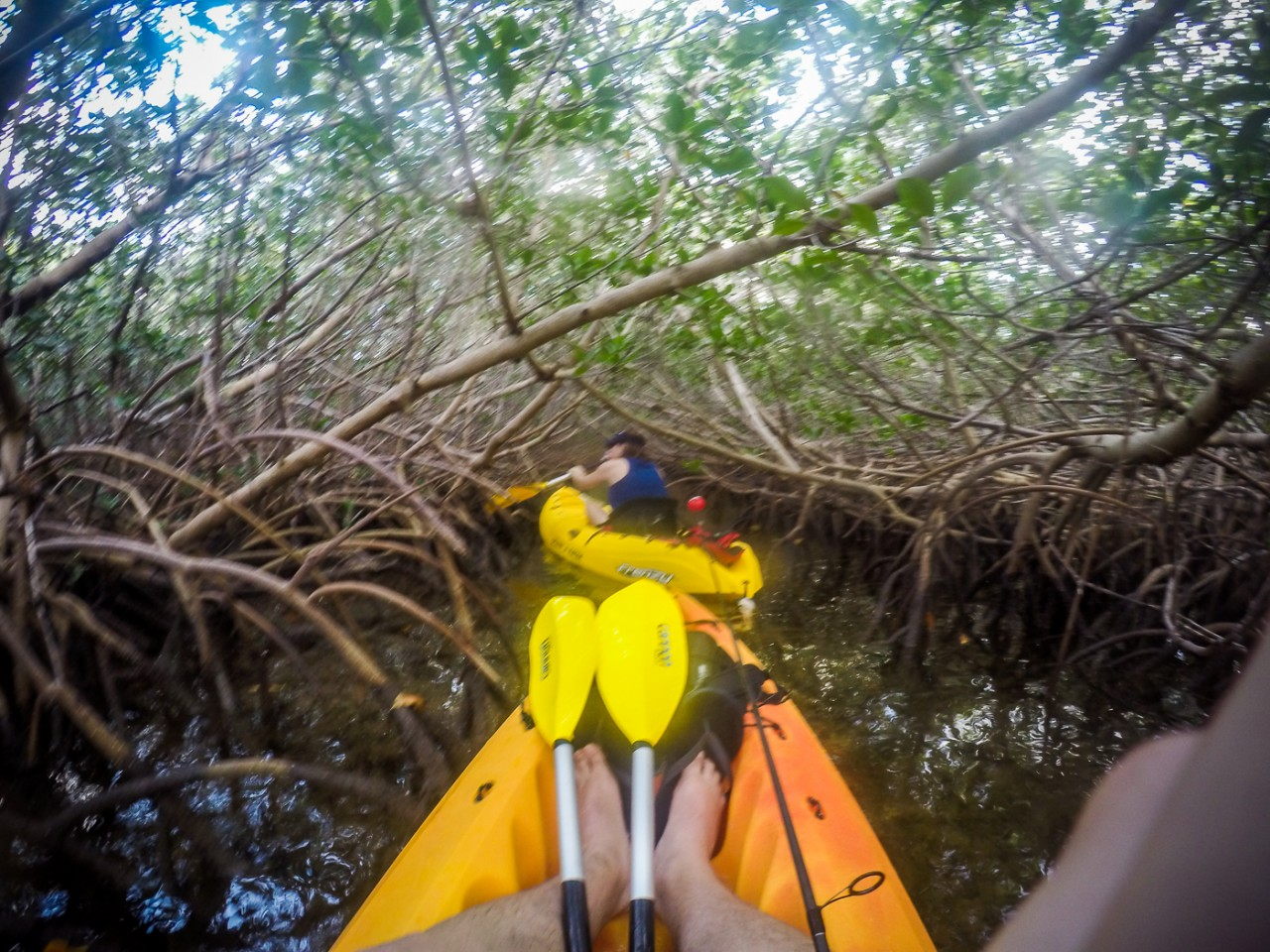 20151229-0592-kayak_24156750606_o